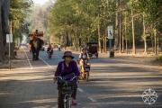 <h5>The road from Angkor Wat to Angkor Thom, Angkor, Siem Reap, Cambodia</h5>