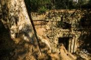 <h5>Royal Palace grounds, Angkor Thom, Angkor, Siem Reap,Cambodia</h5>