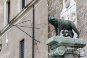 <h5>Capitoline Wolf, Capitoline Hill, Rome, Italy</h5>